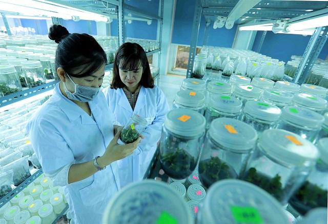 Nestlé Việt Nam Và La Vie Công Bố Mục Tiêu Hoàn trả 100% Lượng Nước Sử Dụng Trong Sản Xuất Năm 2025
